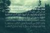 Taleeq - Arabic Typeface example image 3