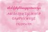 LBPie example image 3