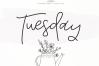 Tuesday - Handwritten Script Font example image 1