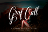 Graf Call New Stylish Script Font example image 1