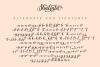 Shalinta - Calligraphy Font example image 13