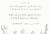 Dandy Dandelions - Handwritten Script & Print Font Duo example image 11