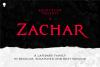 Zachar example image 1