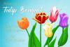 Tulip Bouquet example image 1
