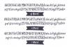 Bottega Font Set example image 6