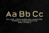 Broadwell Bold Distressed Font example image 5