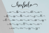 Hosbela Script example image 12
