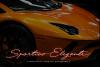 Quick Signature Pro example image 17