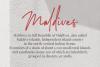 Montreuil - Elegant Signature Font example image 3