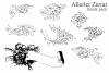 Allerlei Zierat (PACK 5 FONTS) example image 3