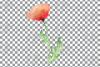 Watercolor red poppy flower and leaf decor clip art. Poppies example image 12