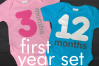 Baby's First Year 12 Months SVG File Cutting Template Set example image 1