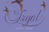 Tryal example image 1