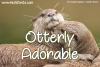 Otterly Adorable example image 1