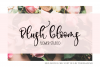 Exclusively Chic Font Duo example image 2