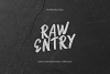 Raw Entry - Raw Script example image 2