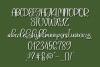 Summer in Savannah - A Hand-Written Script Font example image 5
