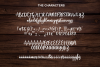 Caristha -bouncy script- example image 10