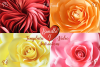 Giant Paper Rose Templates, Bundle of 4 example image 1