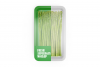 Plastic Tray With Asparagus Mockup example image 4
