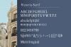 Viktoria // Elegant Font Duo example image 11