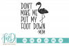 Don't Make Me Put My Foot Down - Flamingo SVG example image 1