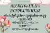 Country Chic Script example image 3