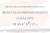 Country Market - A Handwritten Display Font example image 7