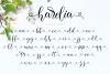 Harelia Script example image 12