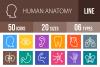50 Human Anatomy Line Multicolor B/G Icons example image 1