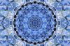 BEAUTIFUL HYDRANGEA KALEIDOSCOPE IMAGE example image 1