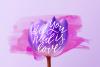 Flower Power script font example image 7