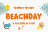 Beachday - Fun Display Font example image 1
