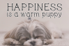 Cats and Dogs - A Cute Handwritten Font example image 7