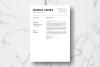 Resume Template Vol. 18 example image 3