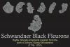 Schwandner Black Fleurons example image 3