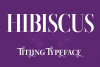 Hibiscus example image 1