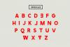 Newstyle Typeface Font example image 2