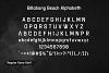 Billabong Beach SVG Font Duo example image 16