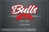 Bull, Bull Basketball, Sport, Design, PRINT, CUT, DESIGN example image 5