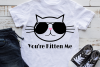 You're Kitten Me Cat svg, funny cat Sunglasses svg cut file example image 2