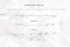 adelea example image 10