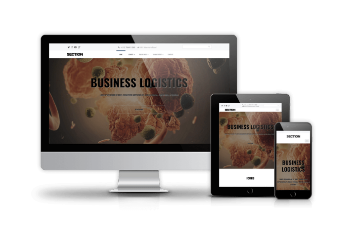 Section - Multipurpose Joomla template