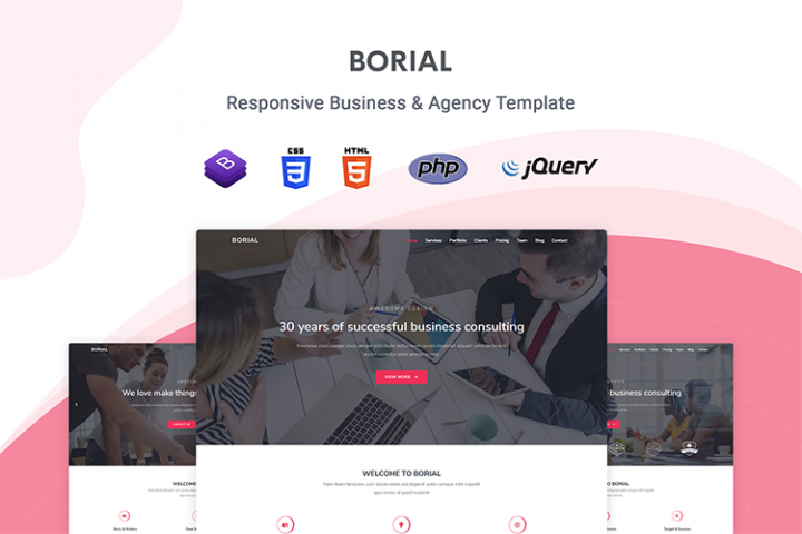 Borial - Business & Agency Template