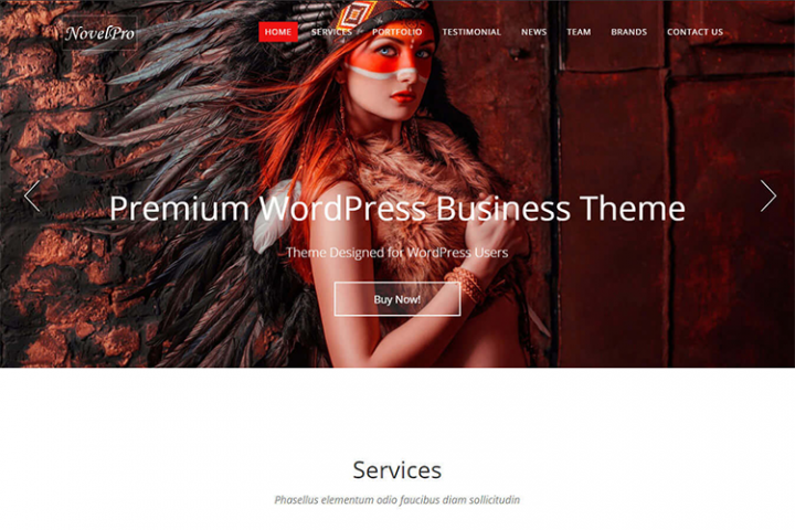NovelPro - Single Page Business Theme