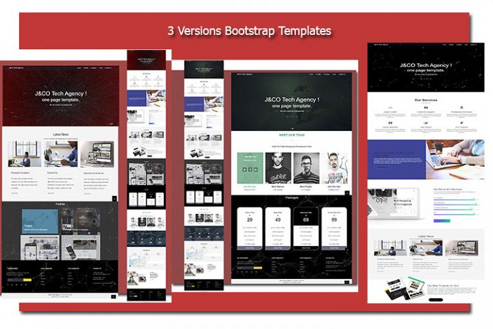 3 Versions Bootstrap Business Templates