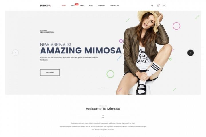 Mimosa - Fashion WooCommerce WordPress Theme