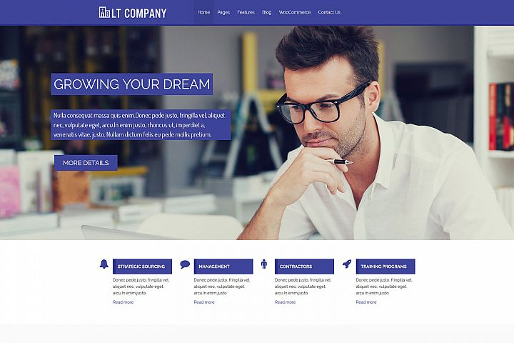 LT Company - Premium Business / Company WordPress Theme