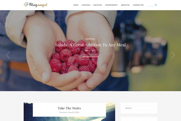 BlogAngel - WordPress Blog theme
