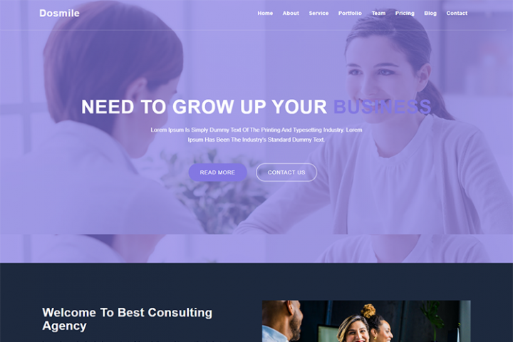 Dosmile Consulting & Business HTML5 Template